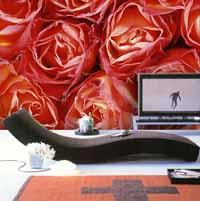 auf Rosen gebettet, Liebe